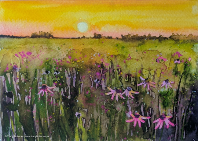 tracy-butler-sunset-on-wildflowers